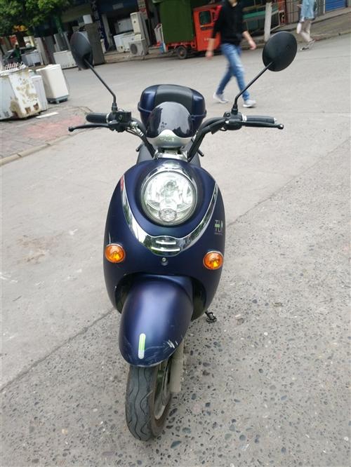 电动车踏板车手续齐全13096229033