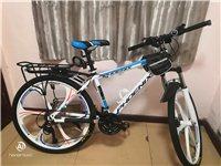 凤凰山地自行车全新