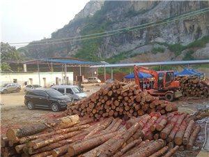 木材加工厂转让,三台剧,地址死:亚游集团,万佳水泥厂。有意者电话联系.13708236792