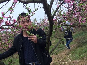 北京現代款