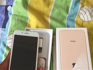 本人现有闲置iPhone8Plus256G国行金色出售,价格便宜实惠,机子无拆无修,各项功能完好,自...