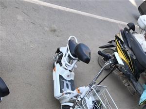 小鸟电动车,刚换电瓶一个星期,车子八成新,800出 不墨迹本人要出外地闲置没用
