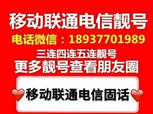南阳固话靓号三连,四连座机靓号转让微信电话18937701989