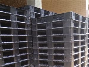 福建�L期回收出售二手塑料托�P,木托�P,�F托�P量大�r��,15959561547郭先生