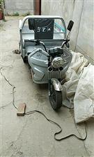 全新电动三轮,一米五斗,52安电瓶!买时4500,便宜处理!买了没大用!