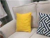 准沙发,从没有用过,现在打算1300处理掉,有意请联系15168177107