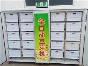 全自動豆芽生產機,九層新,價格便宜