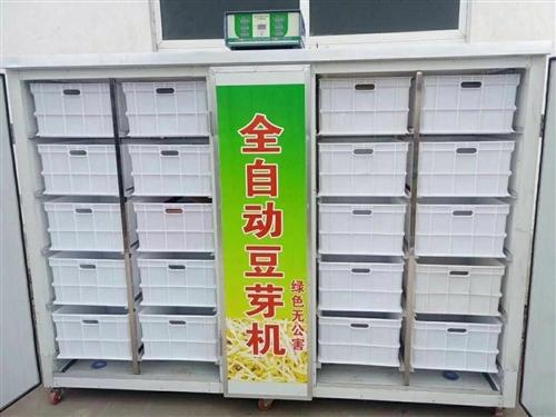 全自动豆芽机,九层新,价格便宜