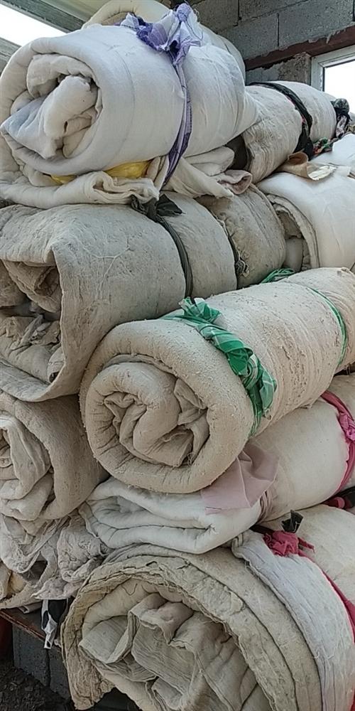 高價回收舊衣服   鞋  包 棉被 床上用品  大型毛絨玩具 服裝店貨底   各種尾貨  賓館...
