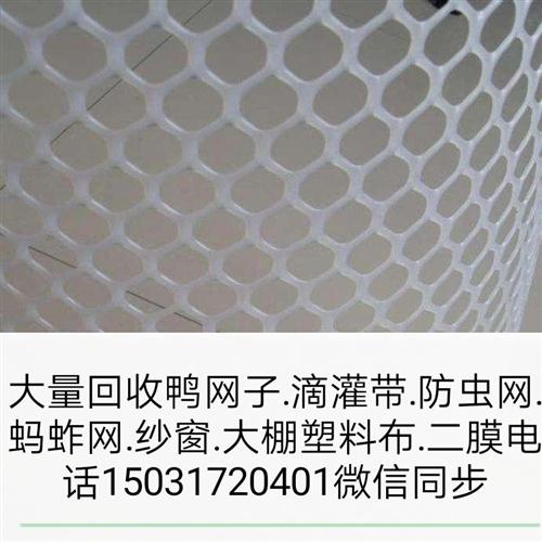 上門大量回收鴨網子~滴灌帶~螞蚱網~大棚塑料布~紗窗~防蟲網