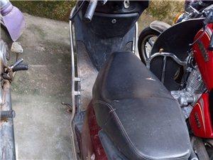 女装摩托车转让,价格面仪     接头暗号 18476480745