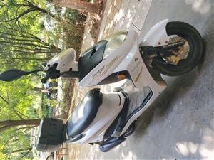 125踏板摩托�,牌照手�m�R全,云A�簦�需要�^�簦��在石林�h城,喜�g的朋友�系