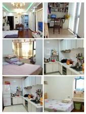 黄杨郡2室 1厅 1卫52.8万元