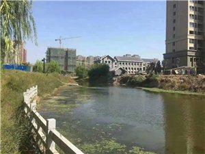 左岸小镇高层观景,学区房,低于市价六万。