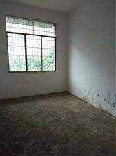 白沙井3室 2厅 1卫18.8万元