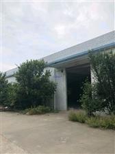 会龙工业园标准厂房6000平方出租!