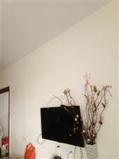 桃江御景3室 2厅 1卫2300元/月