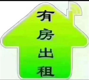 百货大楼宿舍楼2室 1厅 1卫500元/月