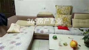 西村6室 3厅 3卫39万元