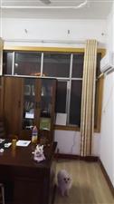 实验中学3室 2厅 1卫200元/月
