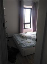 水木�光3室 1�d 1�l33.8�f元