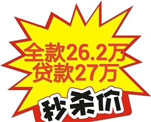 滨河花苑2室87.4平贷款价27万元