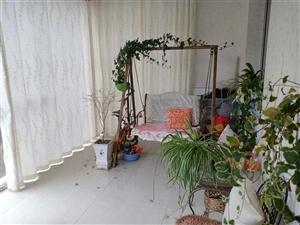 龙腾锦城4室 170平米全新装修2楼