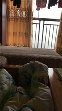御园3室 2厅 1卫20000元/月