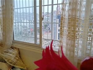 城南天骄3室 110平米全新装修好房子出售