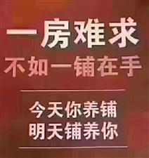 龙腾锦城72.8万元
