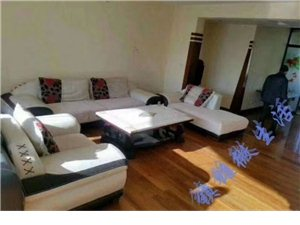 仁和街4室 2厅 2卫81万元