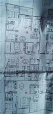 旺德广场3室 1厅 1卫41.8万元