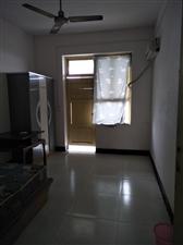 九层楼2室 1厅 1卫600元/月