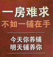 绩溪县旺铺 123平50万出售