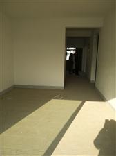 沈园小区,66平方两个卧室,10楼急售,32万