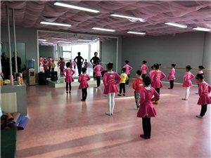 舞蹈教室整套出租1000元/月
