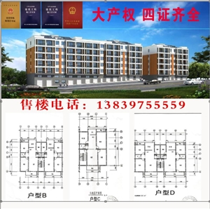 新县艾洼大广花园3室 2厅 2卫48万元