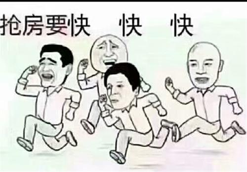 �垮��剧��1