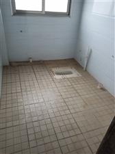 久铜路3室 2厅 1卫19.8万元