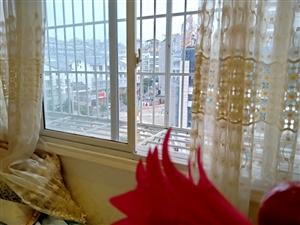 城南天骄3室 2厅 1卫74万元房子精装修房东基住