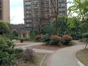 街心花园精装单位房3室 2厅 2卫65.8万元