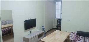 时代广场 一室一厅单身公寓 急售急售急售!