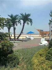 海景投资-万科 拉维海岸1室 1厅 1卫22.3万元
