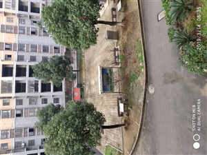 竹林广场2室 2厅 1卫61万元