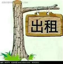 京博花苑2室 2厅 1卫12000元/月