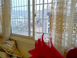 城南天骄3室 2厅 2卫71.5万元精装修带家具家