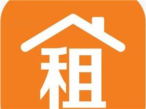 文化广场2楼3室 1厅 1卫400元/月
