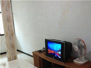 拎包入住伴山国际2室 1厅 1卫600元/月