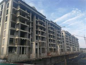环新区白沟五证齐全七十年大产权的住宅