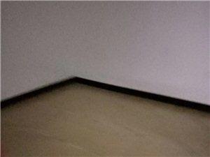 槐树路3室 1厅 1卫41.8万元